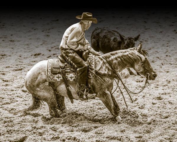 Dufurrena Cutting Horses
